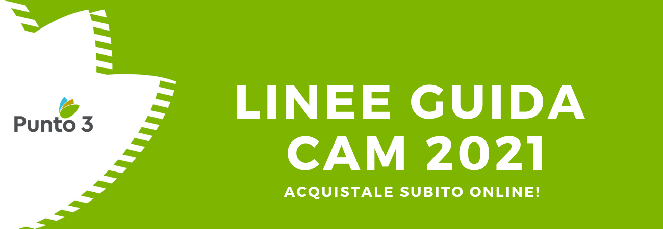 Linee Guida CAM 2021